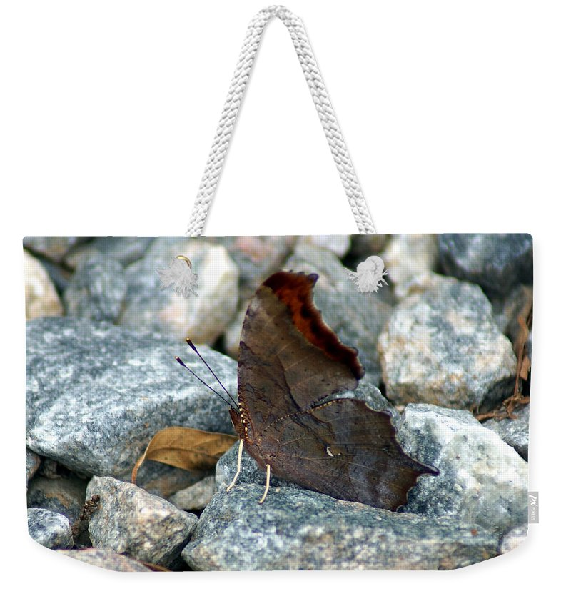 Digital Photography Weekender Tote Bag featuring the photograph One Of The Twelve by Kim Pate