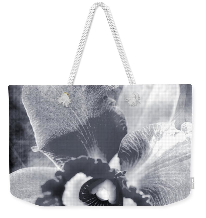 Orchid Weekender Tote Bag featuring the photograph One Song by Floyd Menezes
