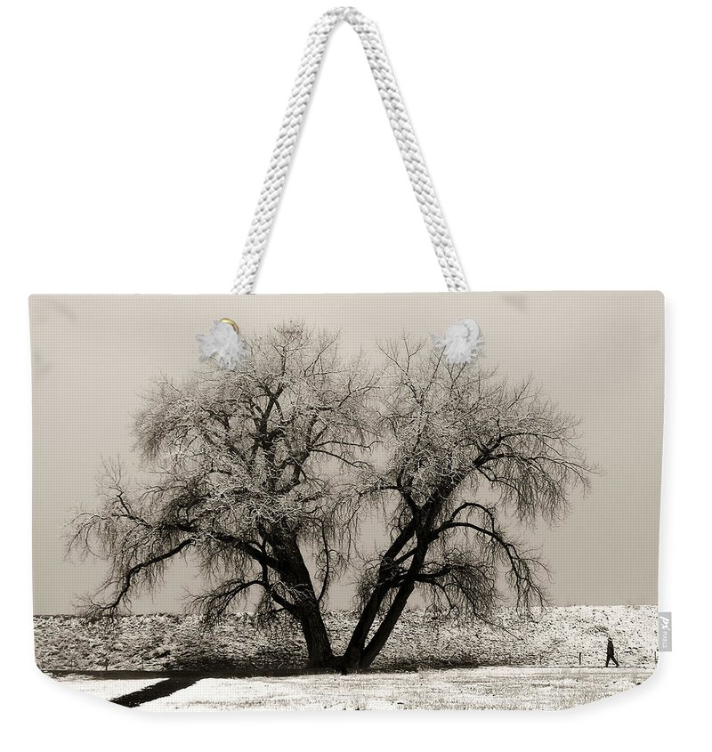 Winter Weekender Tote Bag featuring the photograph One Tree One Man by Marilyn Hunt