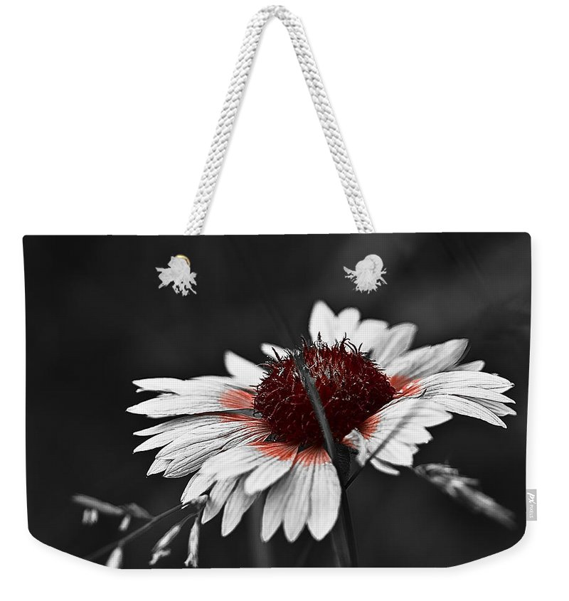 Selective Color Weekender Tote Bag featuring the photograph Only The Reds by Samantha Eisenhauer