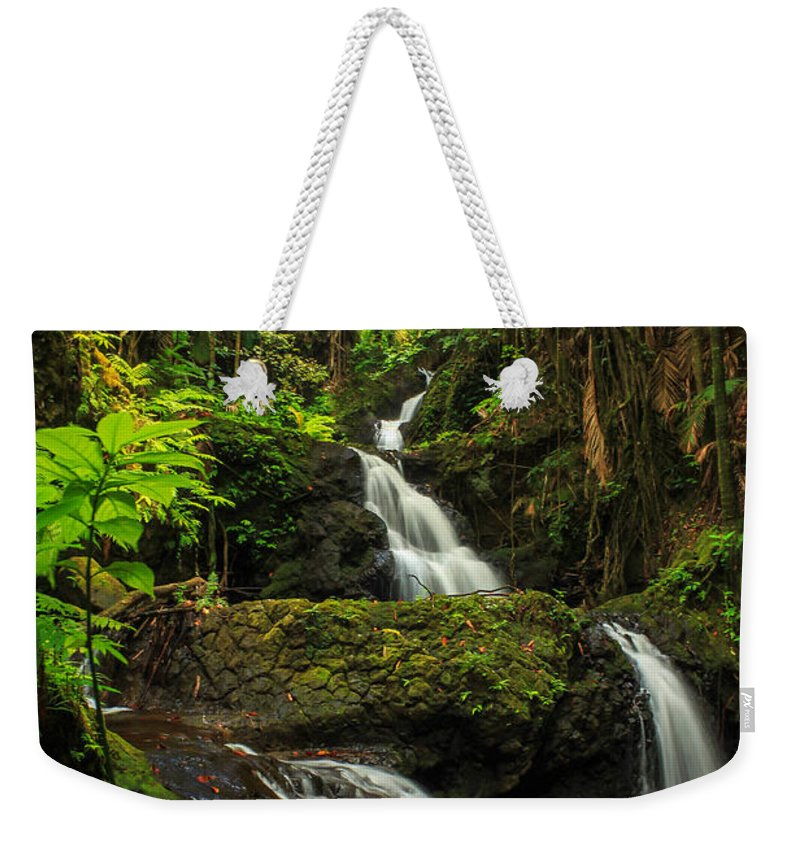 Waterfall Weekender Tote Bag featuring the photograph Onomea Falls by James Eddy