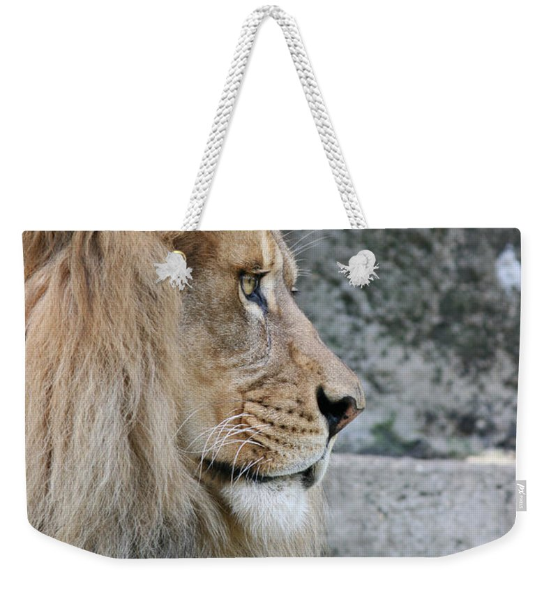 Lion Weekender Tote Bag featuring the photograph Onyo #15 by Judy Whitton