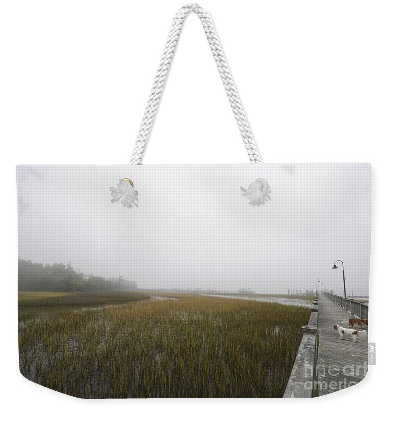 Fog Weekender Tote Bag featuring the photograph Opaque Foggy Morning by Dale Powell