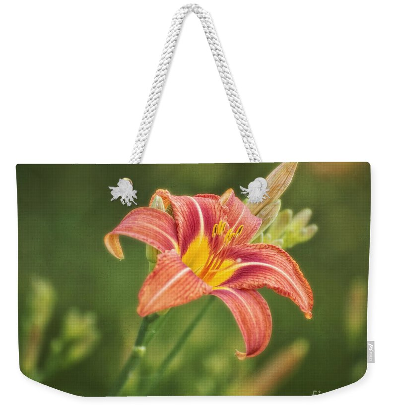 Flowers Weekender Tote Bag featuring the photograph Open For A Day by Claudia Kuhn