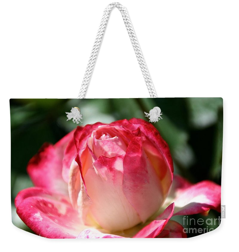 Flower Weekender Tote Bag featuring the photograph Open To A New Day by Susan Herber