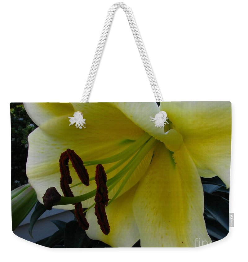 Art For The Wall...patzer Photography Weekender Tote Bag featuring the photograph Opening Day by Greg Patzer