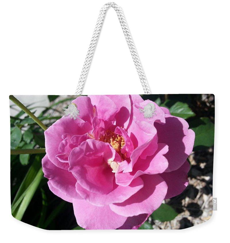 Rose Weekender Tote Bag featuring the photograph Opera Pink Frills by Caryl J Bohn