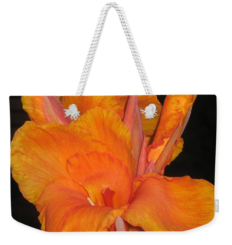 Orange Weekender Tote Bag featuring the photograph Orange Is The New Black by Ray Konopaske