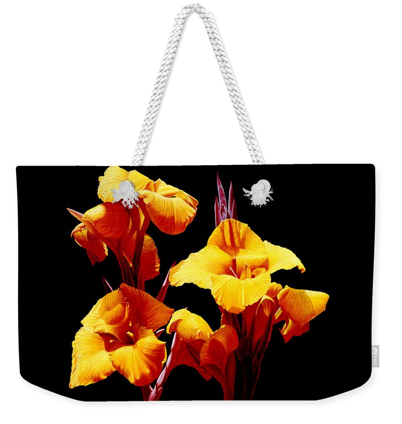 Yellow Cannas Weekender Tote Bag featuring the painting Orange Cannas by Gary Hernandez
