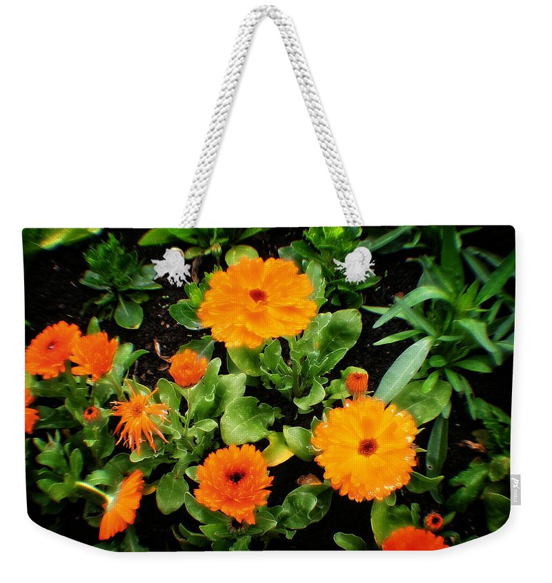 Fleur Weekender Tote Bag featuring the photograph Orange Country Flowers - Series I by Doc Braham