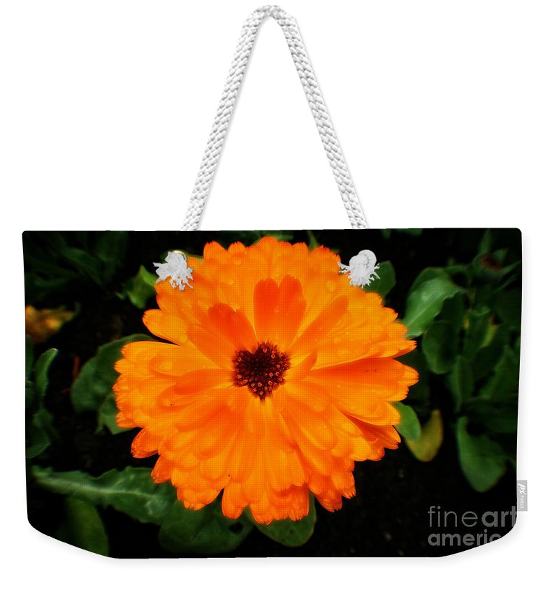 Fleur Weekender Tote Bag featuring the photograph Orange Flowers by Doc Braham