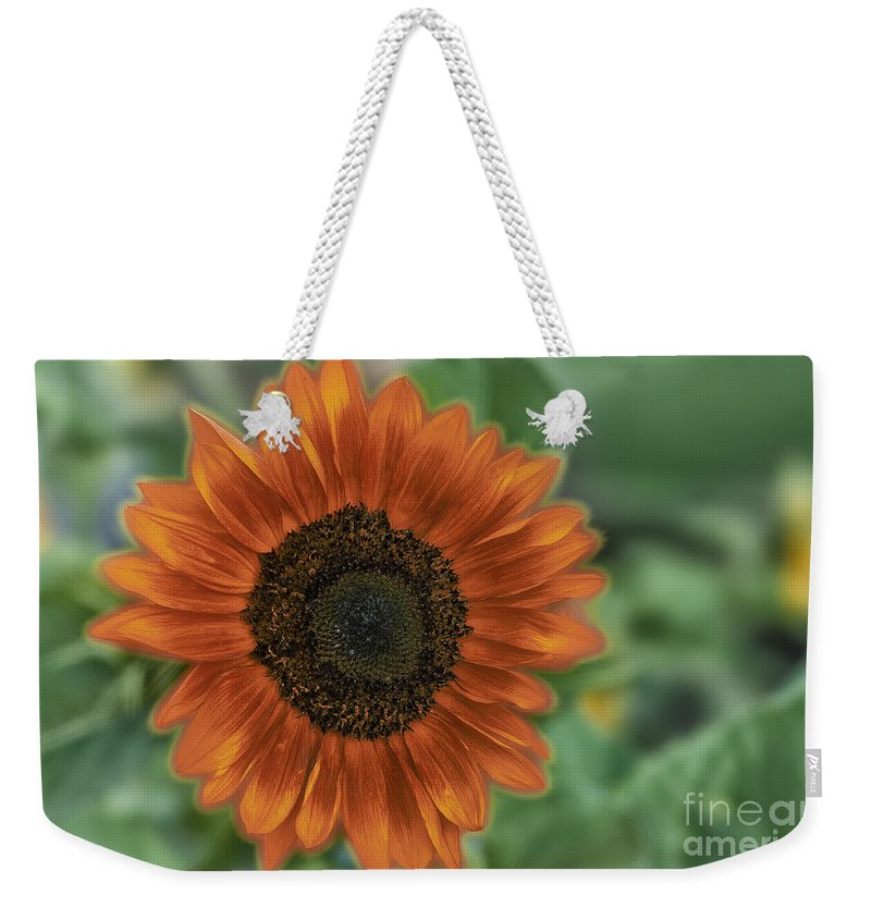 Hdr Weekender Tote Bag featuring the photograph Orange Delight by Sandra Bronstein