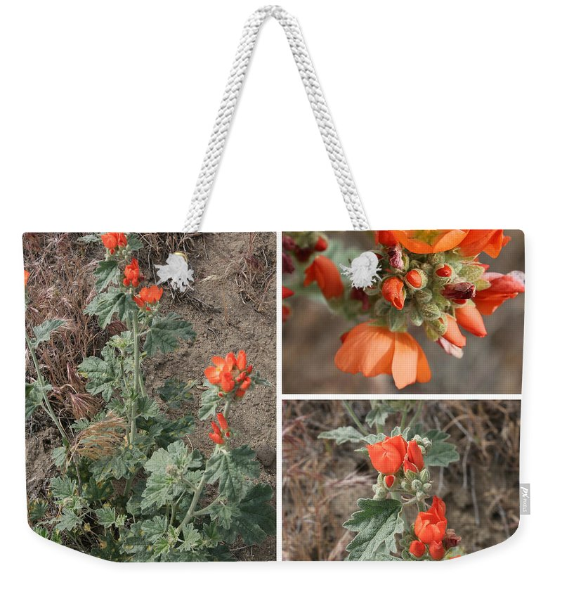 Orange Wildlfowers Weekender Tote Bag featuring the photograph Orange Globe Mallow Collage by Carol Groenen