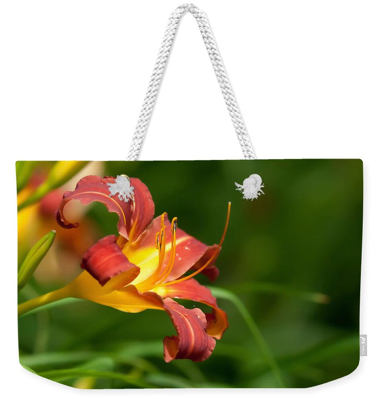 Bud Weekender Tote Bag featuring the photograph Orange Lily by Alex Grichenko