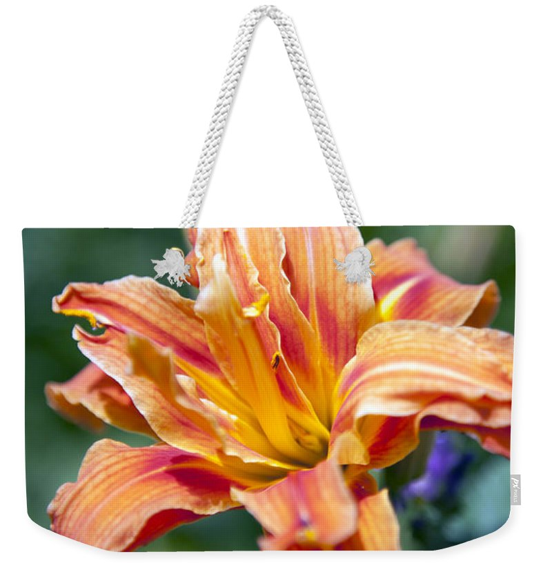 orange Lily Weekender Tote Bag featuring the photograph Orange Lily by Amanda Barcon