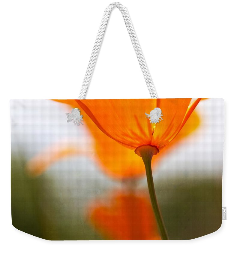 Poppy Weekender Tote Bag featuring the photograph Orange Poppy In Sunlight by Marie Jamieson