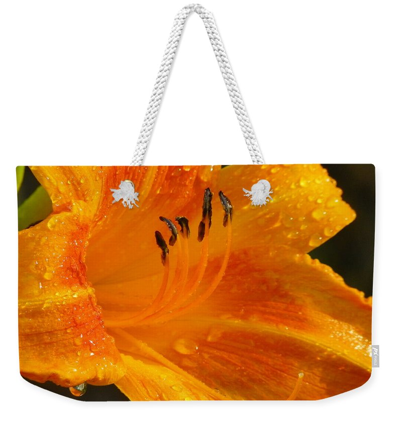 Orange Weekender Tote Bag featuring the photograph Orange Rain by Karen Wiles