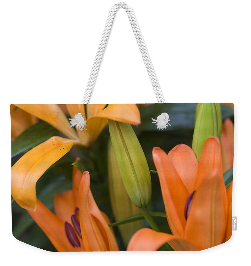 Botany Weekender Tote Bag featuring the photograph Orange Tiger Lily by Juli Scalzi