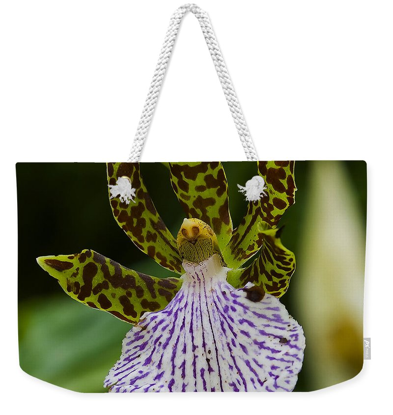 Orchid Weekender Tote Bag featuring the photograph Orchid 11 by Ingrid Smith-Johnsen