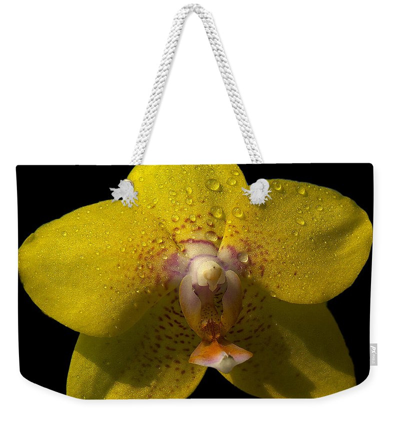 Orchid Weekender Tote Bag featuring the photograph Orchid 15 by Ingrid Smith-Johnsen