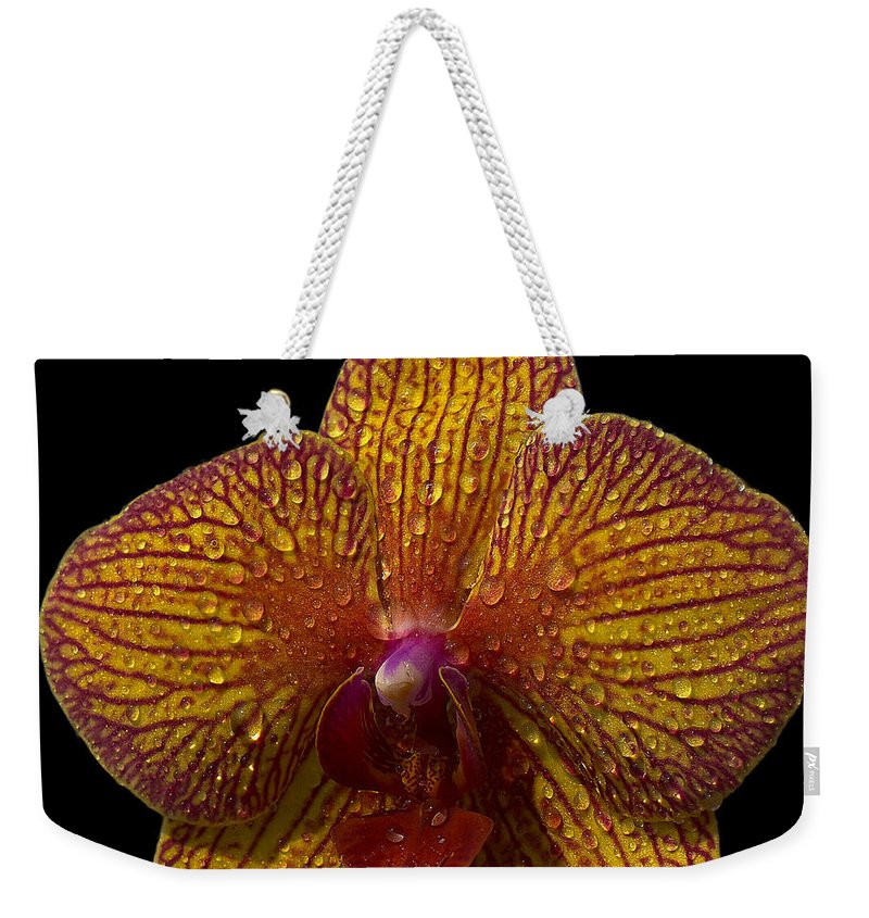 Orchid Weekender Tote Bag featuring the photograph Orchid 16 by Ingrid Smith-Johnsen