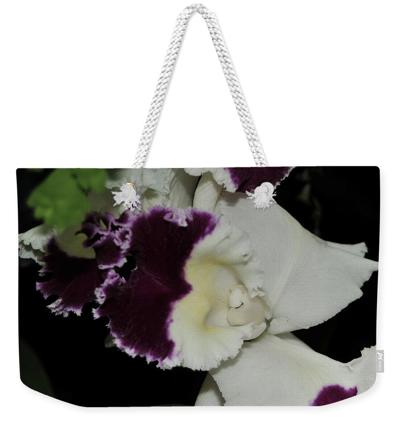 Orchid Weekender Tote Bag featuring the photograph orchid 220 Cattleya Moscombe 'The King' 2 of 3 by Terri Winkler