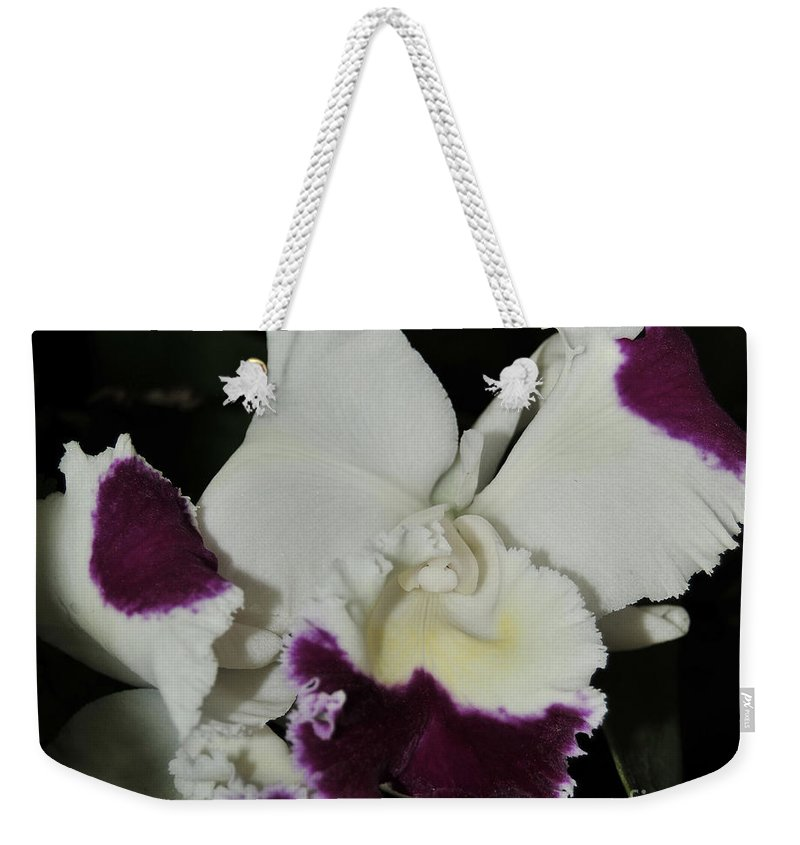 Orchid Weekender Tote Bag featuring the photograph orchid 221 Cattleya Moscombe 'The King' 1 of 3 by Terri Winkler