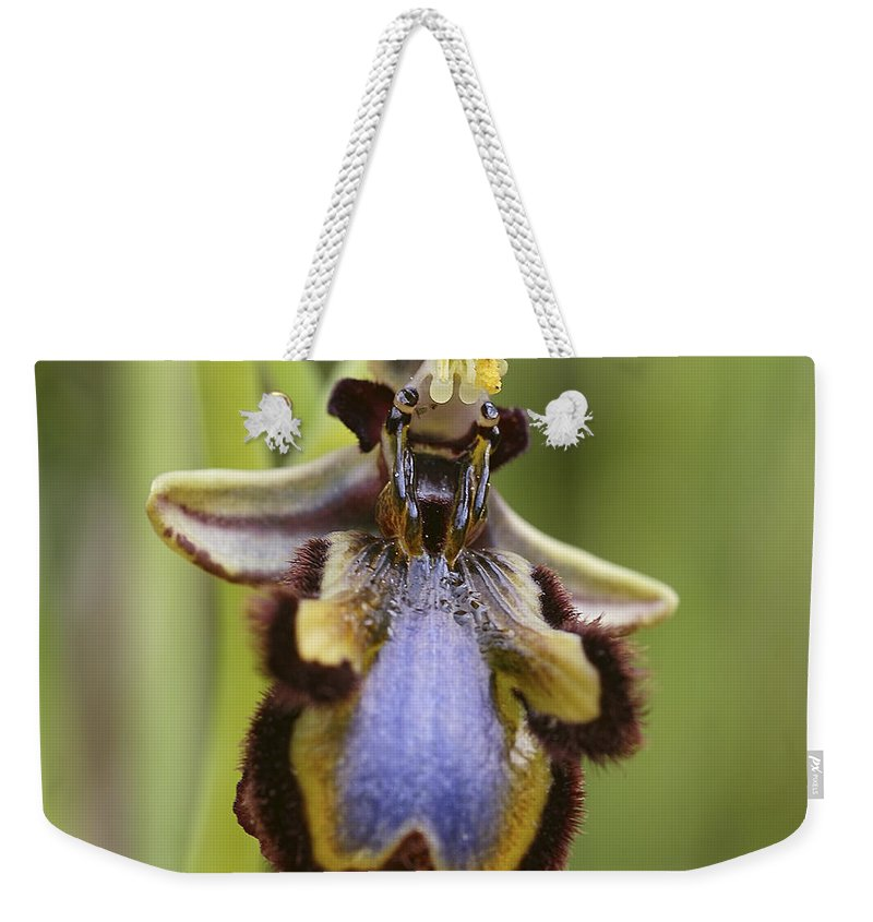 Orchid Weekender Tote Bag featuring the photograph Orchid 25 by Ingrid Smith-Johnsen