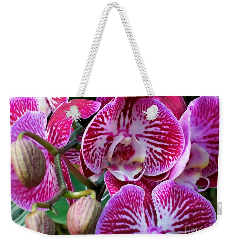 Orchid Weekender Tote Bag featuring the photograph Radiant Orchid by Lena Photo Art