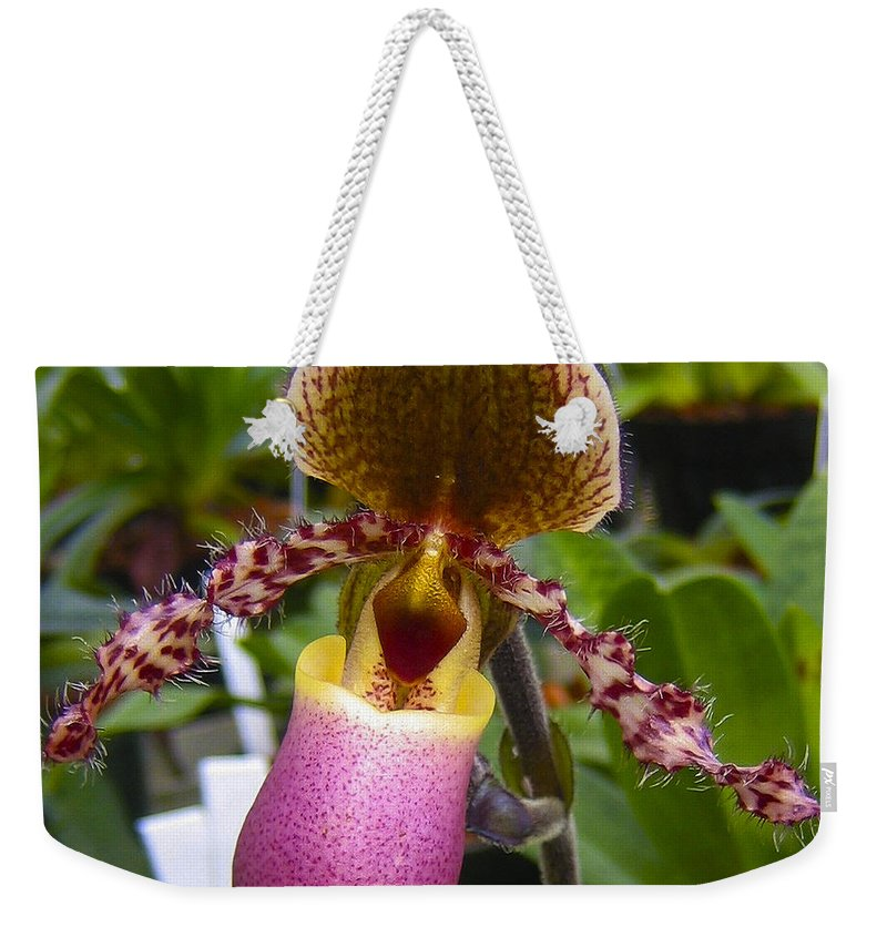 Orchid Weekender Tote Bag featuring the photograph Orchid 31 by Ingrid Smith-Johnsen