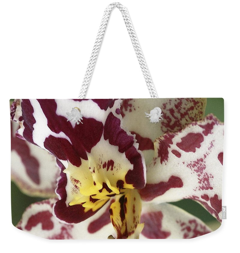Orchid Weekender Tote Bag featuring the photograph Orchid 32 by Ingrid Smith-Johnsen