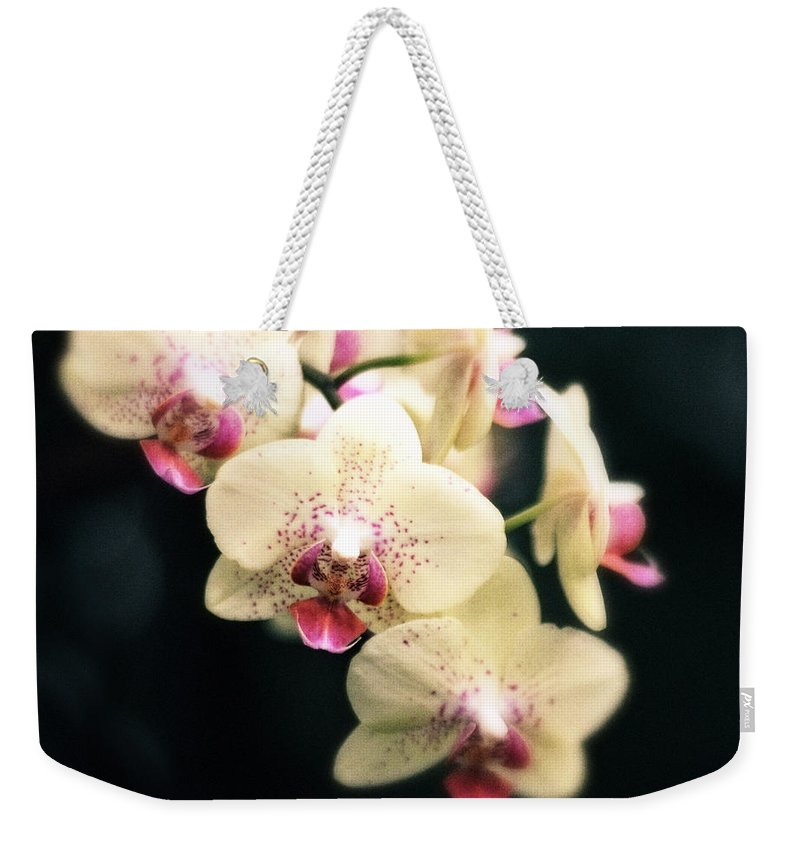 Flowers Weekender Tote Bag featuring the photograph Orchid Blossom by Jessica Jenney