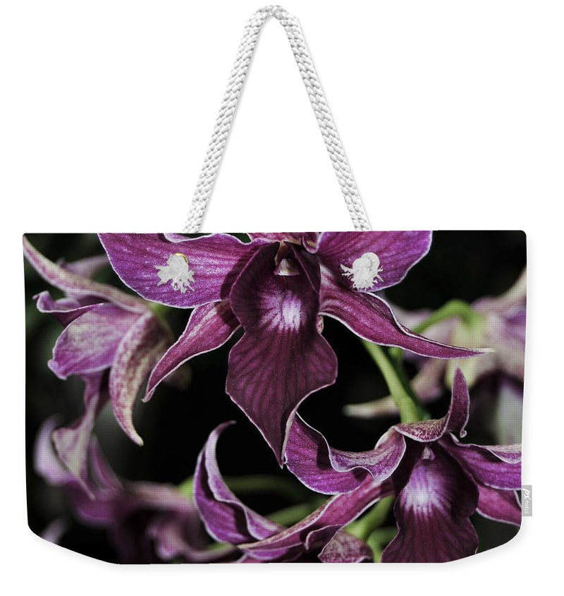 Purple Orchid Weekender Tote Bag featuring the photograph Orchid Dendrobium Lavender Star 204 by Terri Winkler