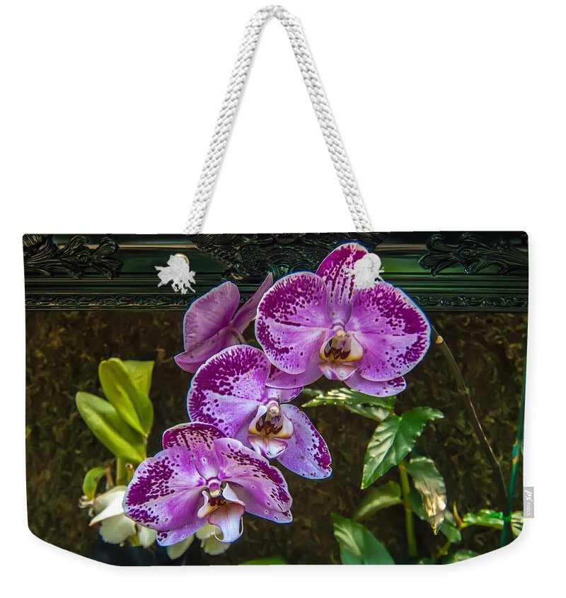 View Weekender Tote Bag featuring the photograph Orchid Flowers Growing Through Old Wooden Picture Frame by Alex Grichenko