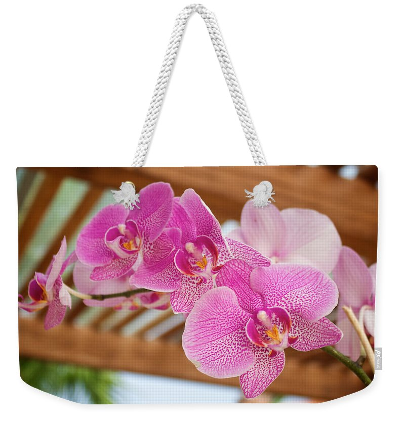 Orchid Weekender Tote Bag featuring the photograph Orchid by Genaro Rojas