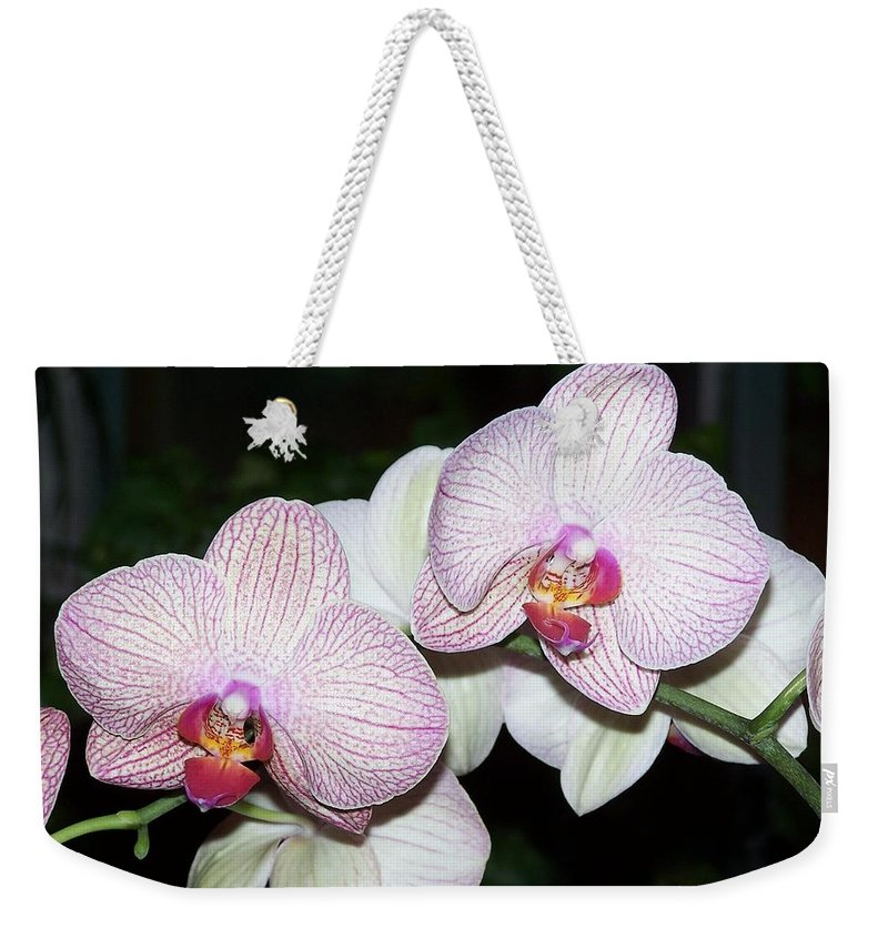 Orchid Weekender Tote Bag featuring the photograph Orchid by Holly Eads