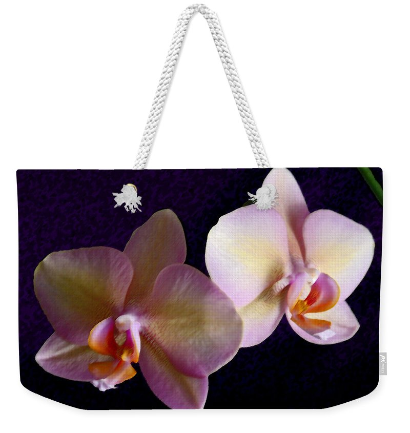 Orchid Weekender Tote Bag featuring the photograph Orchid Light by Steve Karol