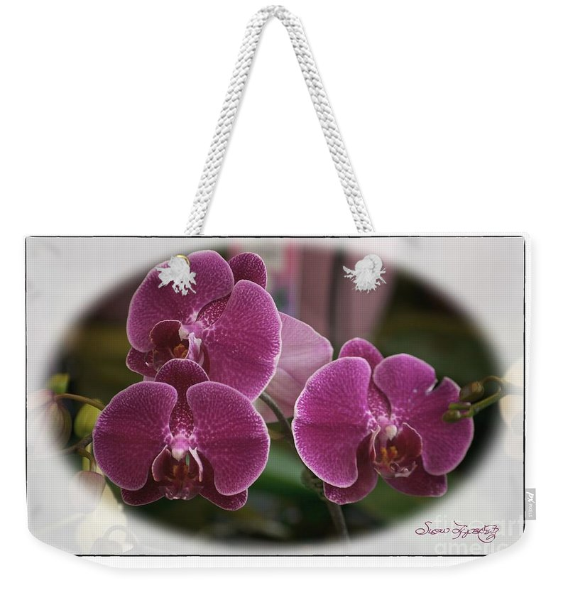 Susan Lipschutz Weekender Tote Bag featuring the photograph Orchid Trio by Susan Lipschutz