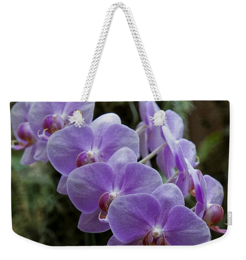 Orchids Weekender Tote Bag featuring the photograph Orchids Square Format Img 5437 by Greg Kluempers