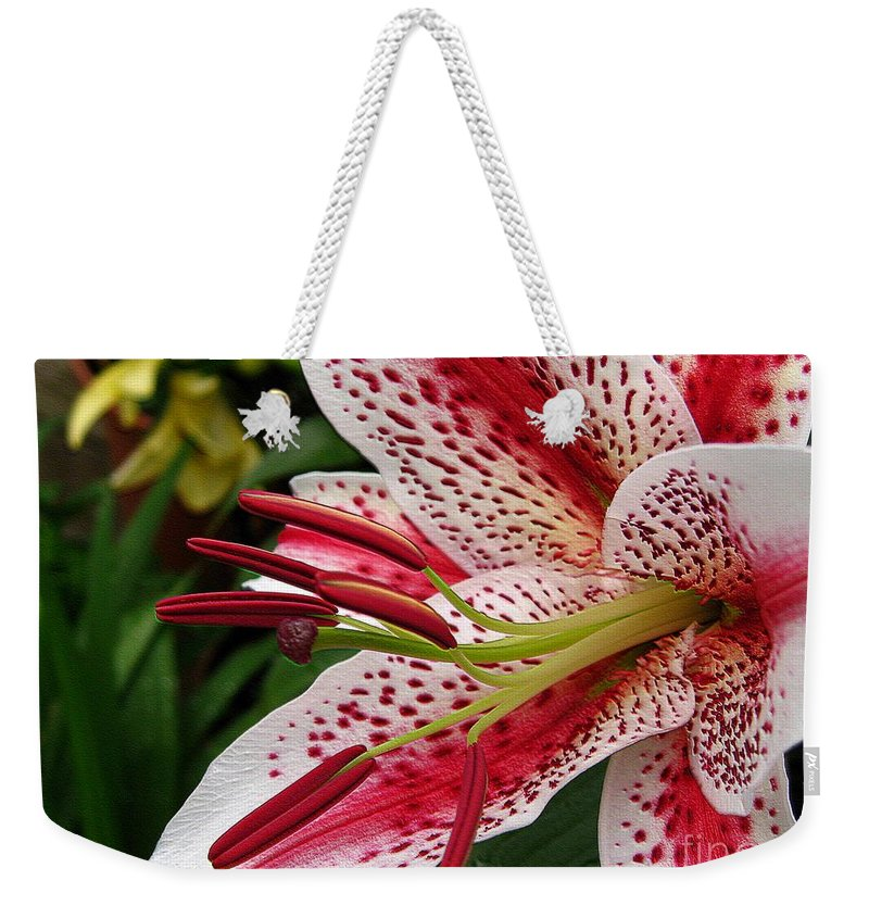 Oriental Lily Weekender Tote Bag featuring the photograph Oriental Hybrid Lily Named Dizzy by J McCombie
