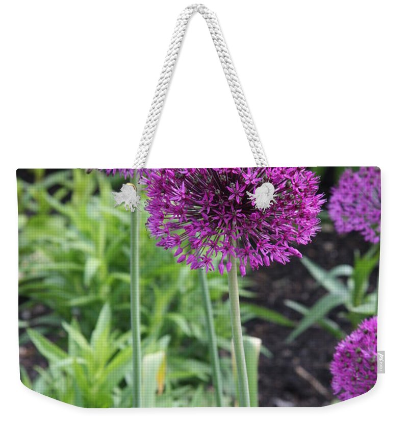 Flowers Weekender Tote Bag featuring the photograph Ornamental Leek Flower by Christiane Schulze Art And Photography