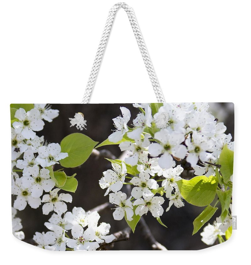Spring Flowers Weekender Tote Bag featuring the photograph Ornamental Pear Blossoms No. 1 by Greg Hager