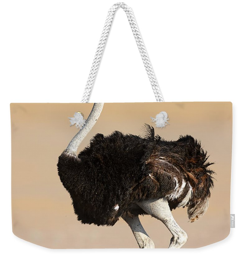 Wild Weekender Tote Bag featuring the photograph Ostrich by Johan Swanepoel