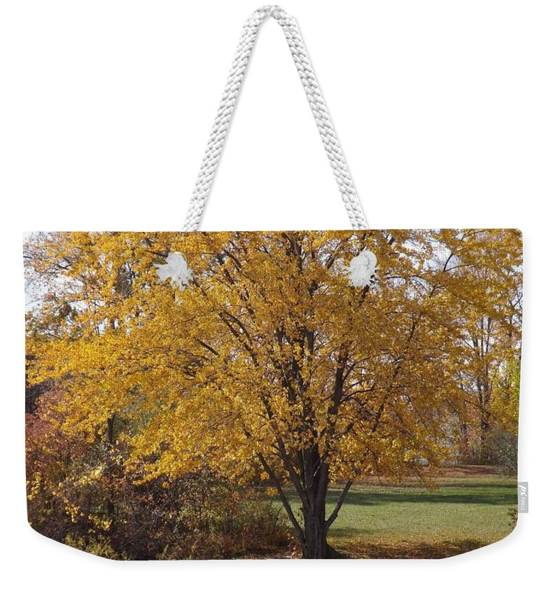 Autumn Weekender Tote Bag featuring the photograph Our Favorite Spot by Sara Raber