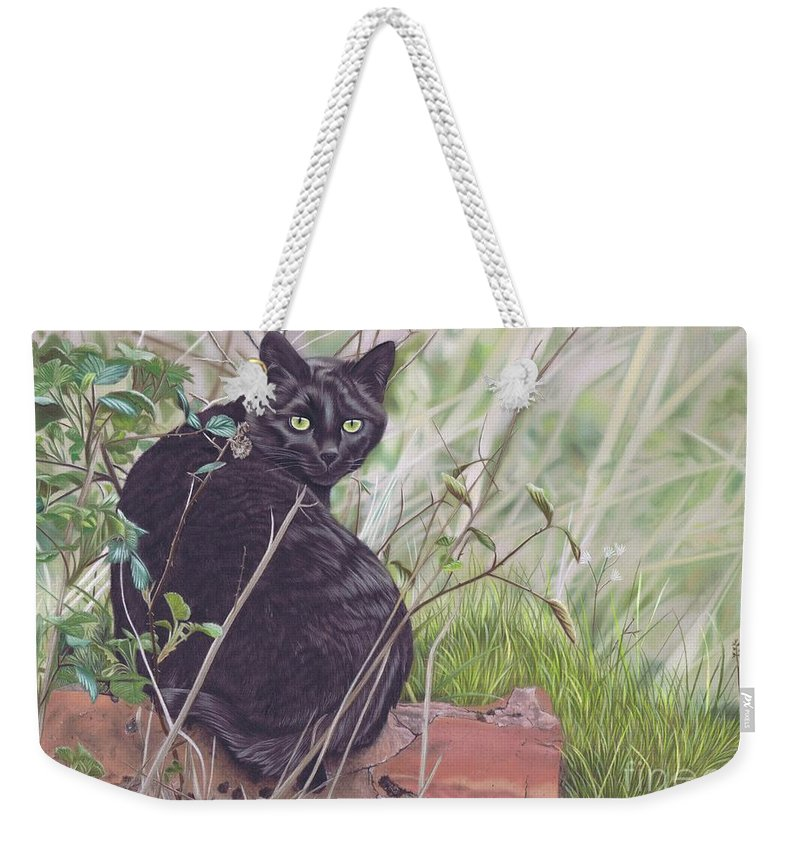 Cat Weekender Tote Bag featuring the pastel Out Hunting by Karie-Ann Cooper