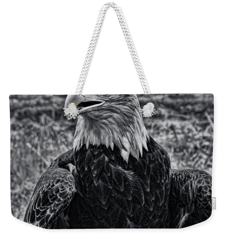 Bald Eagle Weekender Tote Bag featuring the photograph Out In The Field by Tommy Anderson