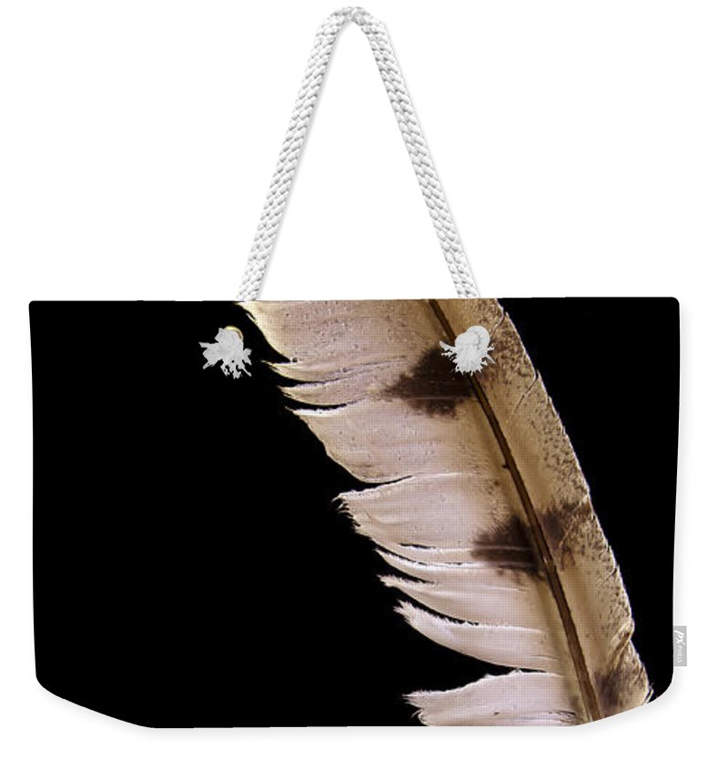 Jean Noren Weekender Tote Bag featuring the photograph Owl Feather by Jean Noren
