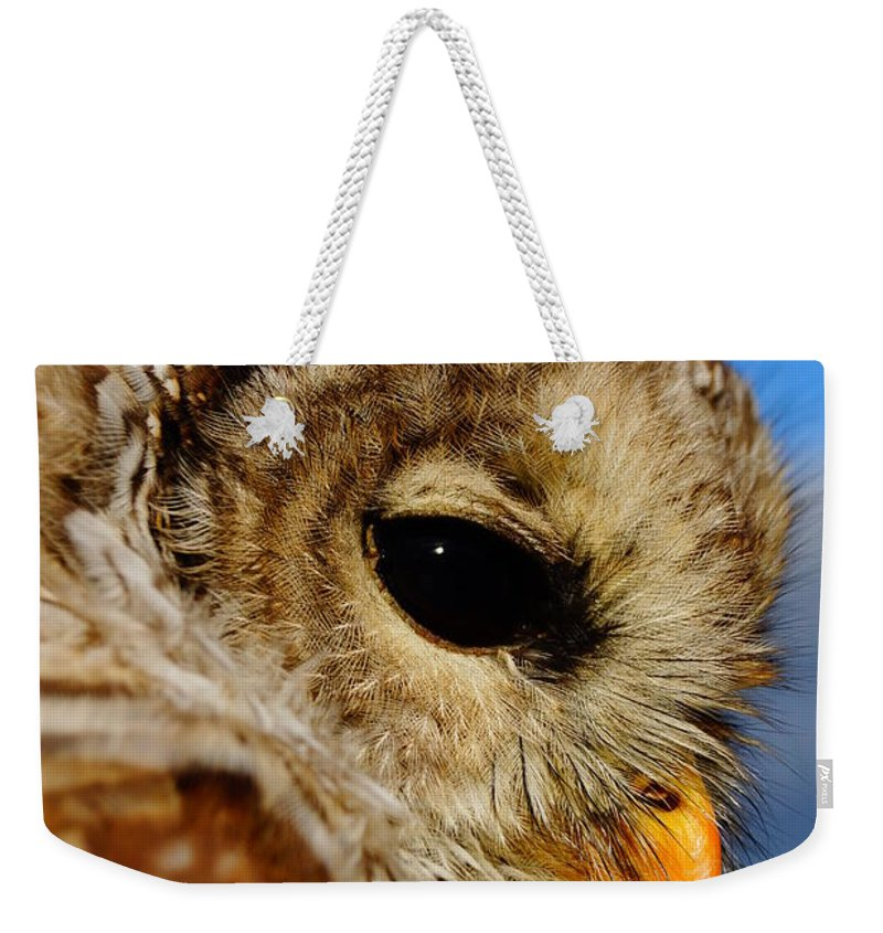 Owl Weekender Tote Bag featuring the photograph Owl by Jeffery L Bowers