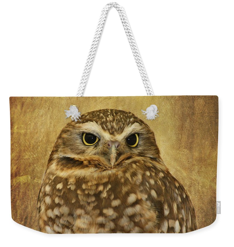Owl Weekender Tote Bag featuring the photograph Owl by Kim Hojnacki