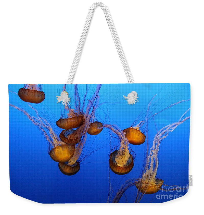 Jellyfish Weekender Tote Bag featuring the photograph Pacific Sea Nettles by Christiane Schulze Art And Photography